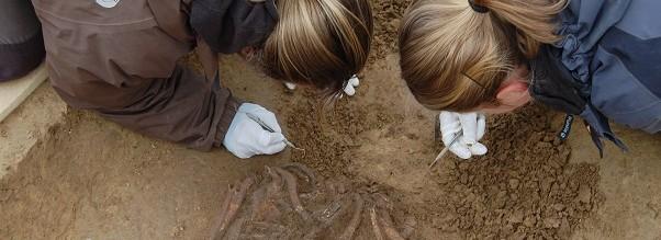 ArchDienst führt archäologische Grabungen in Bayern durch